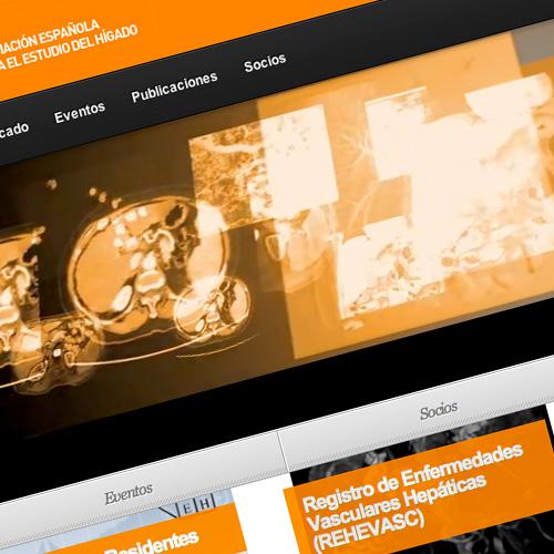 Inauguración de la nueva web de la AEEH